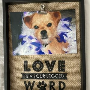 Pet Picture Frame Love is a Four Legged Word